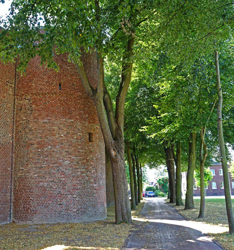 Burgallee in Erkelenz